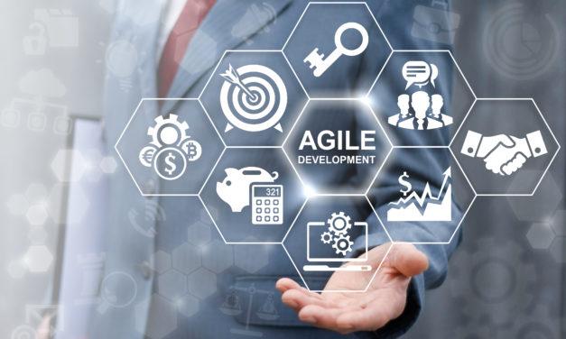 Lösung versprechen dagegen agile Methoden